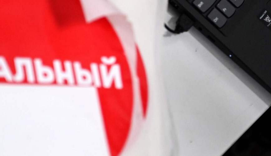 Who are Navalny's Digital Dissidents?